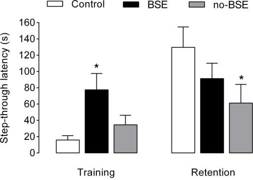 Performance of kainate-treated rats on the passive avoi