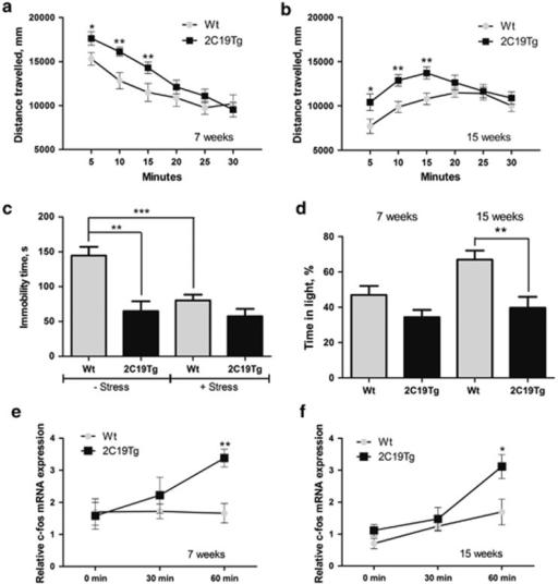 The behavioral phenotype of CYP2C19Tg-Hem mice is indic