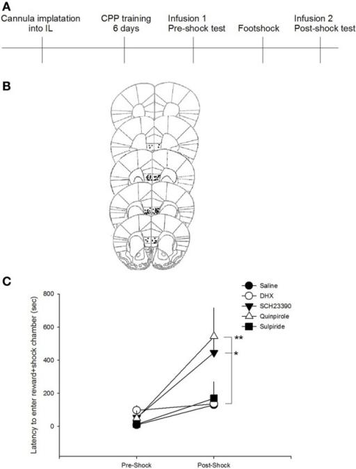 Figure 2:Bidirectional modulation of infralimbic dopamine