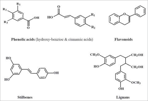 Chemical structures of the different classes of polyphe