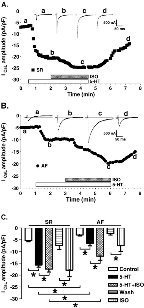 fig4:Electrophysiological and arrhythmogenic effects of 5