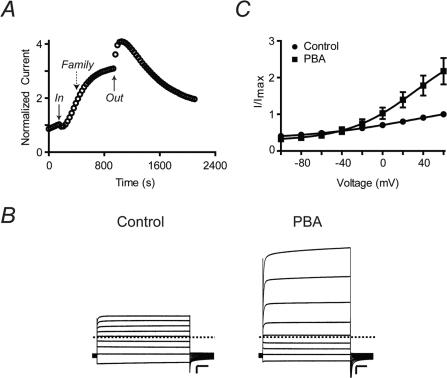 PBA activates Q1/E3 complexes.(A) Time course of Q1/E3