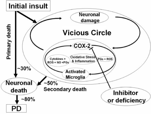 Schematic flow chart depicting the role of the vicious