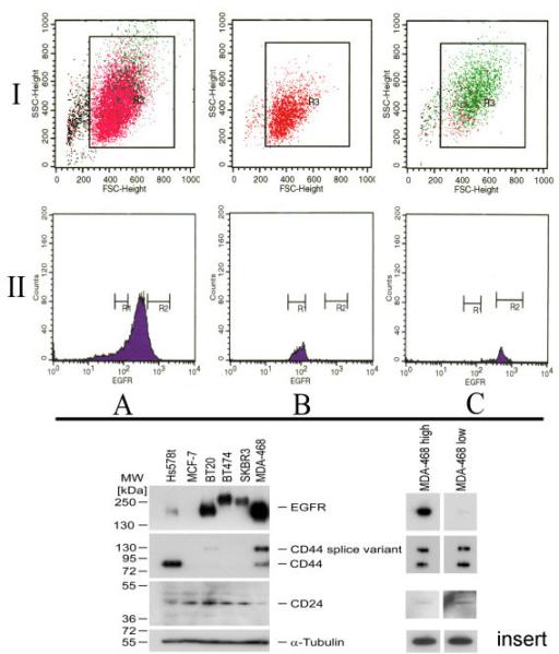 Figure 1:Selective regain of egfr gene copies in CD44