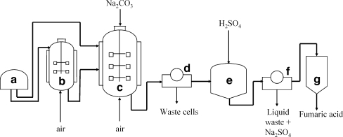 Fig4:Fumaric acid production by fermentation- Open-i