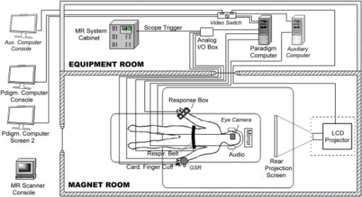 Diagram of behavioral hardware connections. fMRI data a