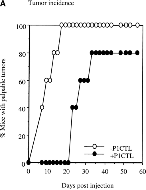 Selective elimination of B7H-expressing tumor cells by