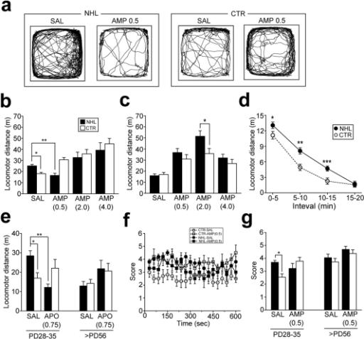 pone-0019450-g002:Neurodevelopmental Disruption of Cortico