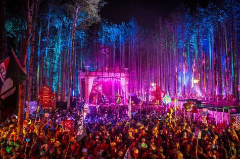 Music concert at night in the middle of a forest