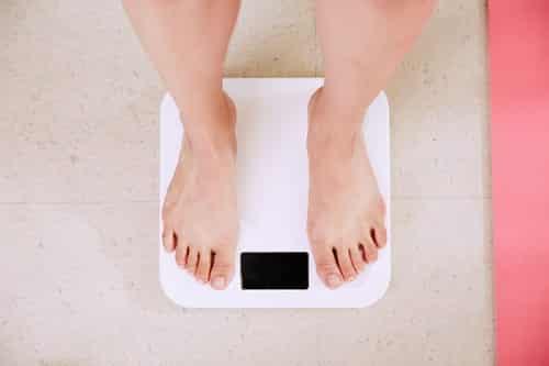weight loss diet plan - openiun