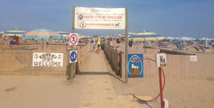 dog beach lidi e spiagge per cani