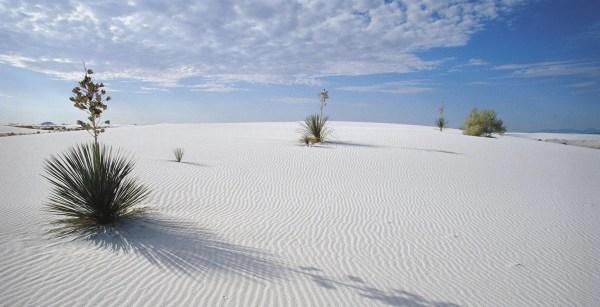 Wgite-Sands-0
