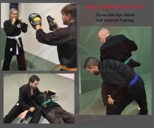 Open Mat Martial Arts new timetable