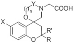 Synthesis and Functional Evaluation of Novel Aldose