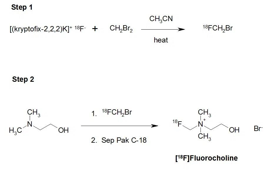 Scheme 1. Synthesis of [18F]fluorocholine.