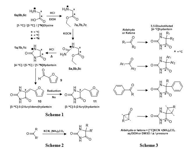 Figure 3 shows the chemical synthesis routes of isotopic labelled hydantoin