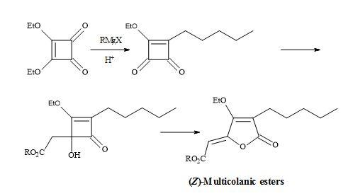 Figure 11. Synthesis of (Z)-multicolanic esters