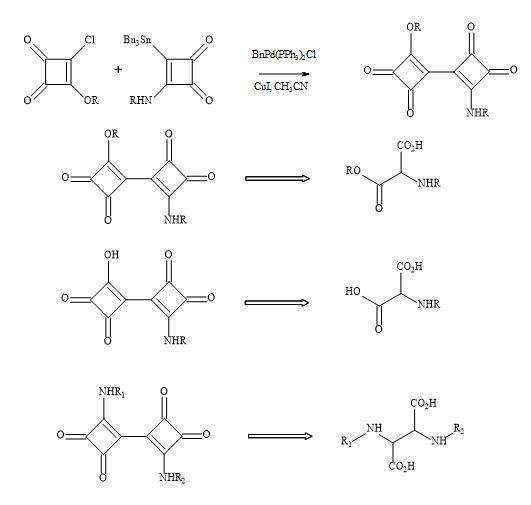 Figure 48. Bisquaryl peptide metaphors
