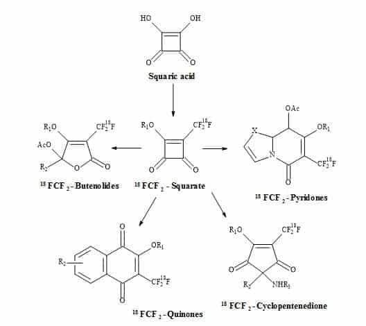 Figure 87. [18F]Squarate leading to highly functionalized [18F]compounds