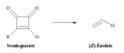 The second argument favours the semisquarate-for-enolate substitution in that like many 1,3-dicarbonyl compounds; semisquarates contain a stable enol within their structures.