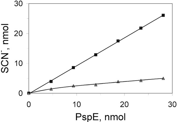 Biochemical and Genetic Characterization of PspE and GlpE