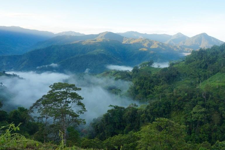 El Chocó Conflict Zone Tourism, Survival of the Fittest