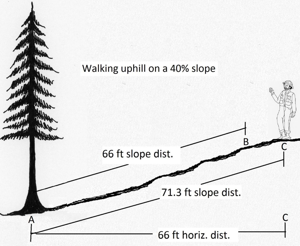 2 7 Field Technique Tips For Measuring Tree Height