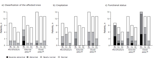 A Randomized, Controlled Trial Comparing Autologous Matrix