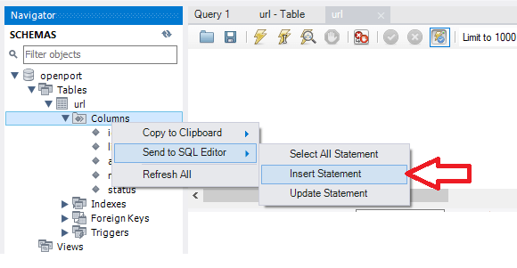 MySQL Insert data to our table