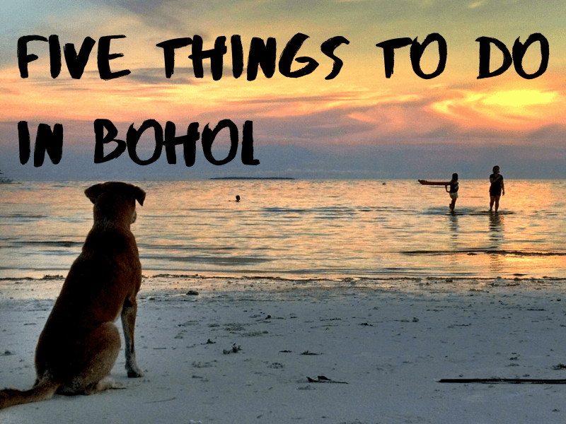 Five Things to Do in Bohol
