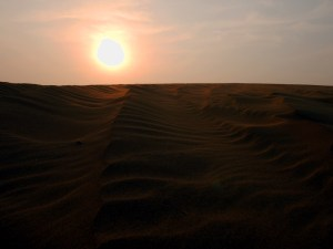 Ripples on the Dune at Sunset