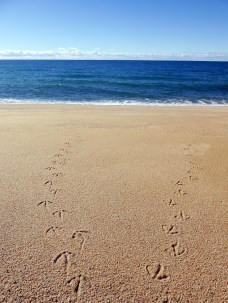 5) Footprints in the Sand