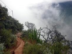 Path of Mist