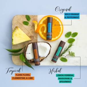 Tropical, Herbal, Original Lip Balm