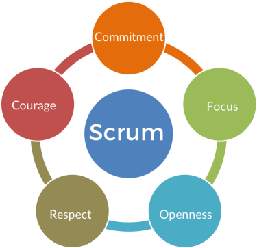 Image of a circular infographic with five parts saying commitment, focus,openness, respect, and courage