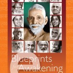 buy the book Blueprints for Awakening awakening