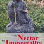 Nonduality Teachings from Nisargadatta Maharaj
