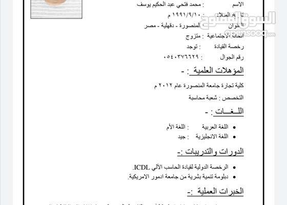 محاسب مصري خبرة 5سنوات 116695169 السوق المفتوح