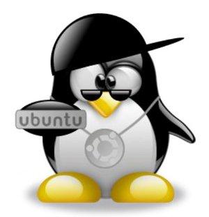 Customise Ubuntu