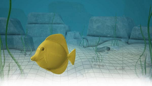 Animating Goldfish