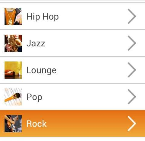 Radio stations are basically music genres