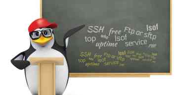 Ten Useful Commands in Linux