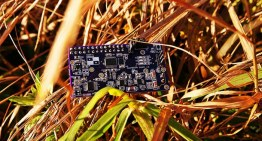 Picking up the best embedded development board