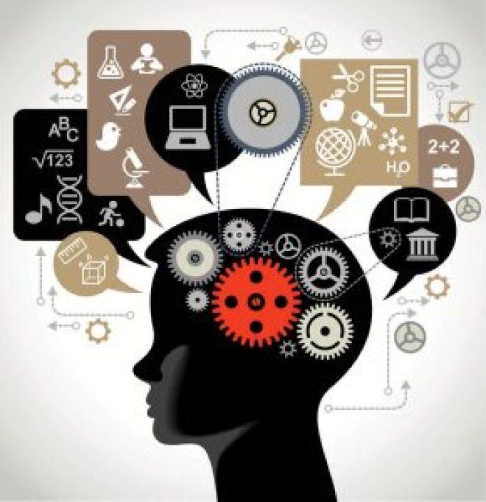 brain Automation illustration