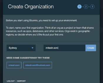 Figure 3 Creating an organisation in IBM Bluemix