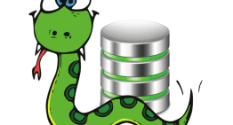 A Peek at Three Python Databases: pickleDB, TinyDB and ZODB