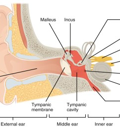 this image shows the structure of the ear with the major parts labeled  [ 1721 x 1063 Pixel ]