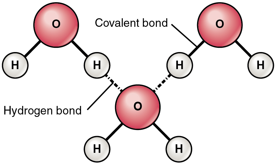 Chemical Diagrams Shows The Structural Formula Of Chemical Compounds