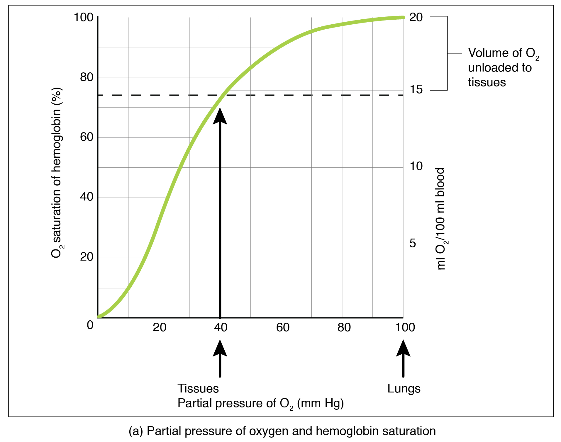 hight resolution of the top panel of this figure shows a graph with oxygen saturation of the y