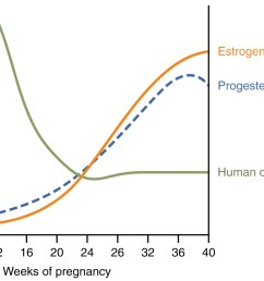 a graph hormone concentration versus week of pregnancy shows how three hormones vary throughout pregnancy figure 3  [ 1578 x 886 Pixel ]